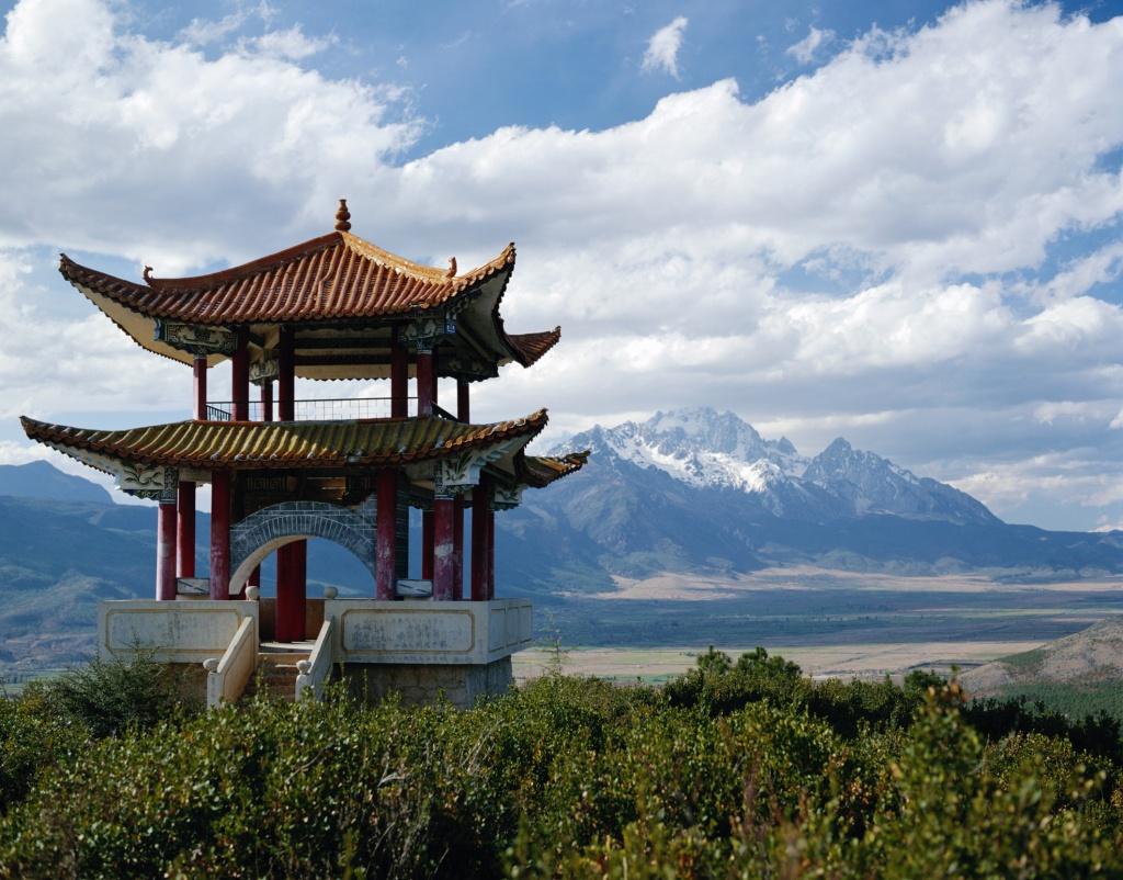 Китайские травы помогают лечению рака и артрита, считают врачи