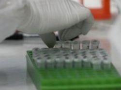 Ученые нашли микроорганизмы, уничтожающие раковые клетки