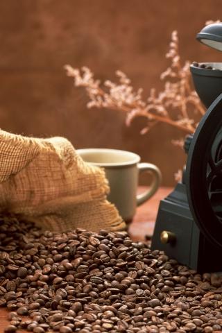 В каких случаях кофе вызывает рак?