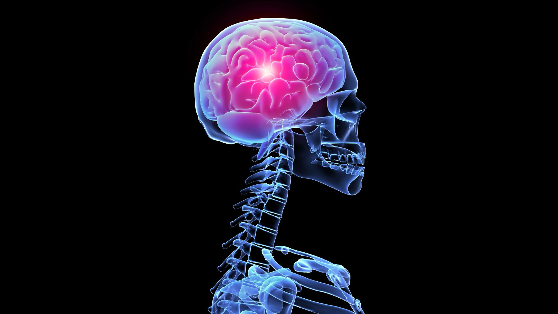 Облучение головного мозга — не проблема с клеточными технологиями