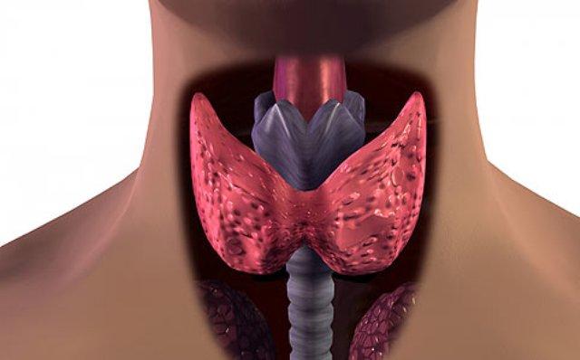 Хирургия рака щитовидки без рубцов