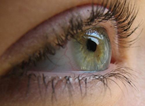 Глаукома. Признаки, диагностика