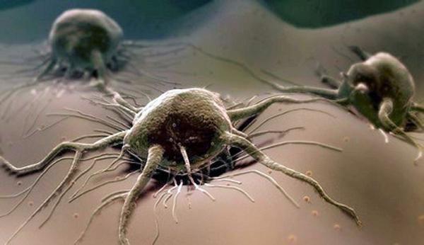 Снижение заболеваемости раком