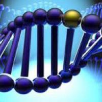 Диабет и рак связаны работой одинаковых генов
