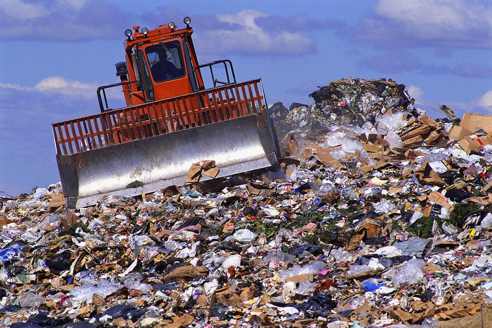 Своевременный вывоз мусора поможет не заболеть