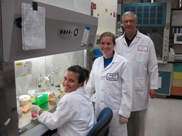 Израильские ученые разработали мини-иглу, убивающую рак