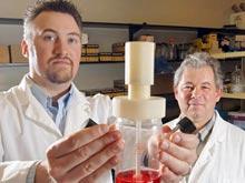 Стволовые клетки лишили способности вызывать рак