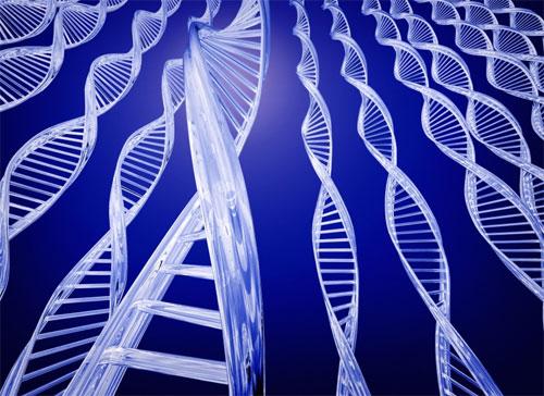 Генетические исследования выявили новые возможности терапии рака груди
