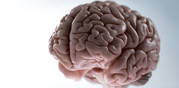 Рак мозга может начаться с десятка бывших нейронов