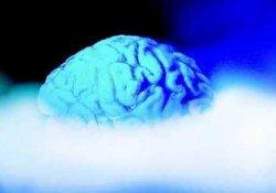 Впервые объективно доказано существование феномена «химиотерапевтического мозга»