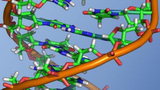 Обнаружен важный для жизнеспособности раковых клеток белок