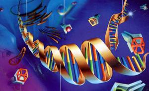 Гены, которые участвуют в развитии опухолей