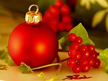 Онкологи увидели потенциальное противораковое средство в рождественской омеле