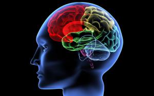 Самая смертельная форма рака мозга взята под контроль