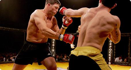 Рацион для боксеров