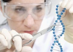 Прорыв года: иммунотерапия рака – главное достижение в области медицины