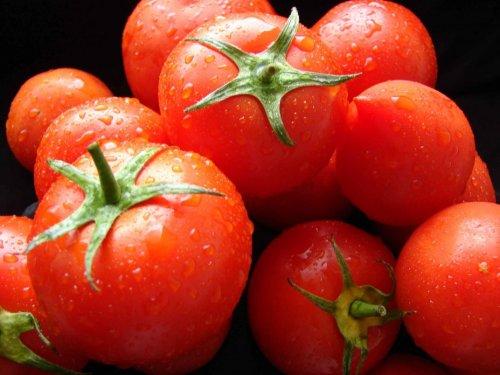 Модифицированные томаты способны предупредить рак