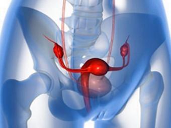 Носительницам «гена Джоли» посоветовали поторопиться с удалением яичников