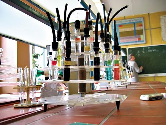 В Новосибирске появилась лаборатория по изучению онколитических вирусов