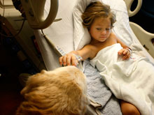 Собачья терапия помогает детям, больным раком, быстрее излечиться