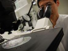 Жировые капсулы успешно опробовали на раковых опухолях