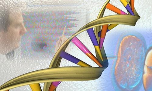 В США будет создана крупнейшая база данных пациентов с онкологическими заболеваниями