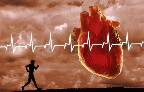 О пользе кардио – тренировок