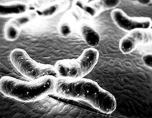 Наночастицы помогут доставить препарат в энергоблок злокачественных клеток