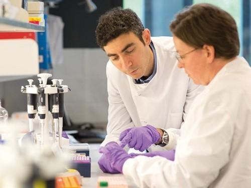 Ученые нашли эффективный подход к лечению рака