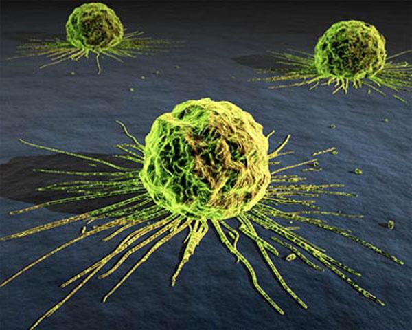 Минпромторг рассмотрит возможность организации производства нанопрепаратов для терапии онкологических заболеваний