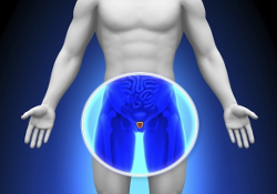 Рак простаты: скрининг может сократить смертность на 20%
