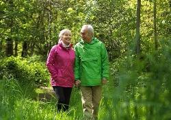 Прогулки пешком – профилактика не только инфаркта, но и рецидива рака