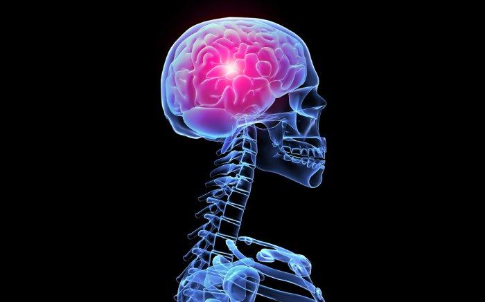 Какие факторы приводят к раку мозга