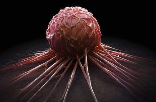 Подтверждена безопасность использования квантовых точек для выявления опухолевых клеток у человека