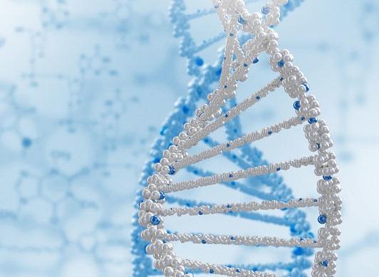 Ученые открыли генетику рака крови