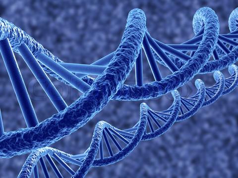 Ученые открыли редкую генетическую тропу рака