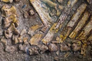 Найдены останки древнего человека с раковой опухолью