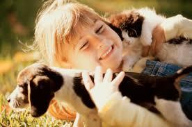 Собака лучший друг человека, или стоит ли заводить питомца