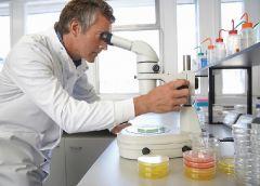 Рак крови будут лечить при помощи генной терапии