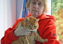 Любимые кошки оказались отличными диагностами рака