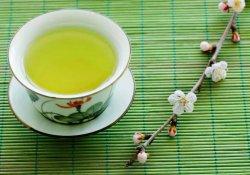 В зеленом чае обнаружены вещества с противоопухолевой активностью