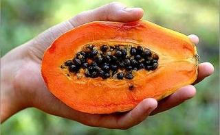 Ученые: Листья папайи эффективно помогают в борьбе с раковыми заболеваниями