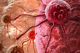 Раковые заболевания – суровая неизбежность?