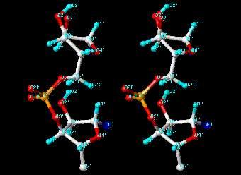 Стало возможным остановить рак молекулами рибонуклеиновой кислоты