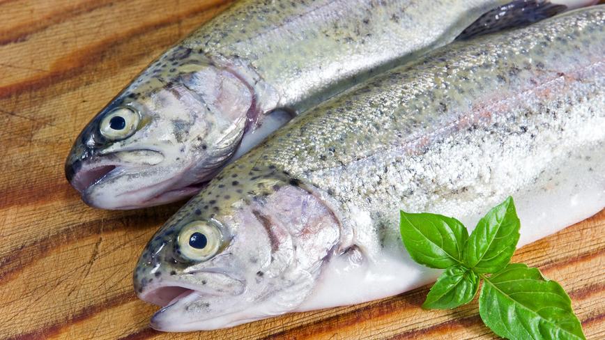 Рыба и вегетарианство снижают риск рака кишечника