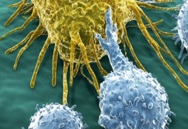 Ученые смогут предсказать рак за 13 лет до проявления симптомов