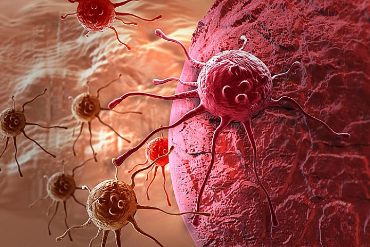 Эксперты: многие предубеждения, связанные с раком, не верны