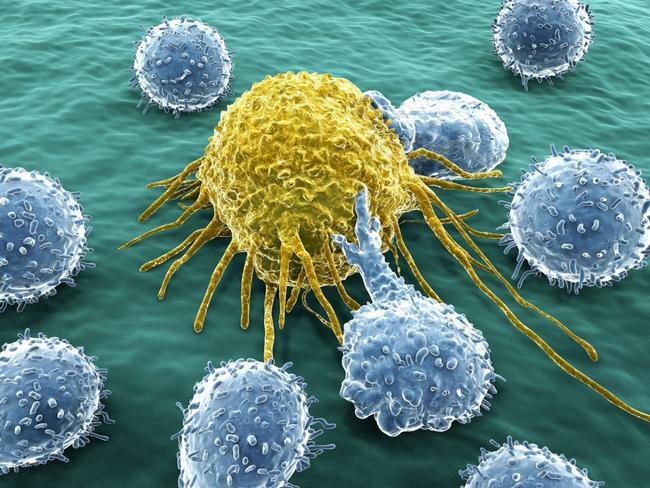 Американские онкологи выступили против повышения цен на противораковые ЛС