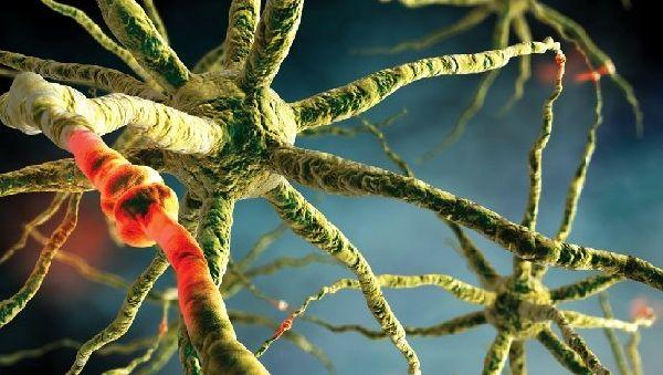 Эпигенетическе модификации запускают рак мозга