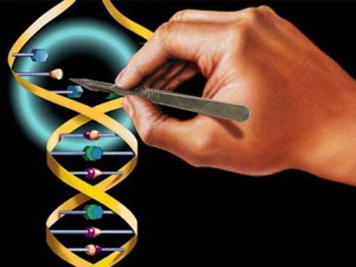 Генная терапия предотвращает развитие рака молочной железы